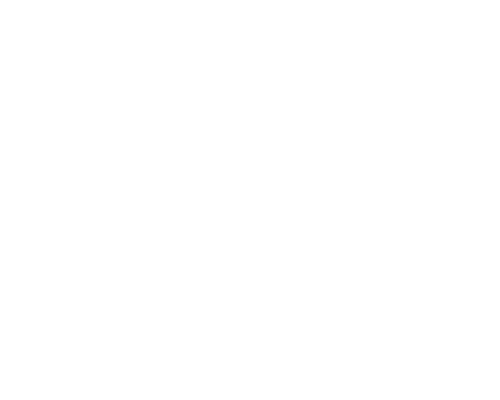 Congo Conservation Company