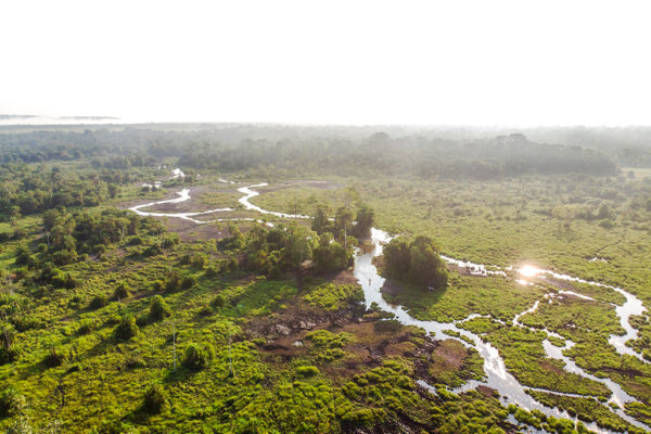 congo-conservation-company-lango-camp-bai-from-abover