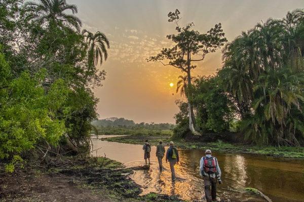 congo-conservation-company-lango-camp-sunset-bai-walk