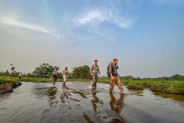congo-conservation-company-lango-camp-walking-the-bai