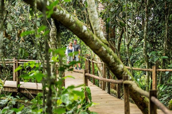 congo-conservation-company-lango-camp-walkway