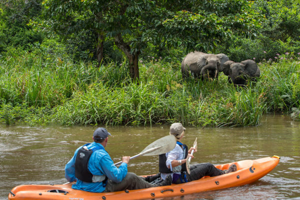 congo-conservation-company-mboko-camp-kayaking