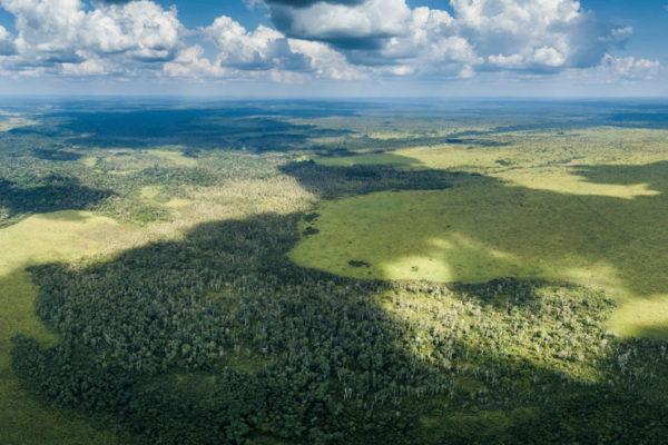 congo-conservation-company-mboko-camp-savannah-ecosystem