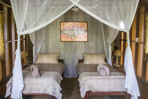 congo-conservation-company-mboko-camp-twin-chalet