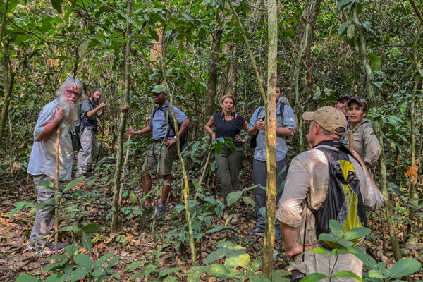congo-conservation-company-sangha-lodge-forest-walk
