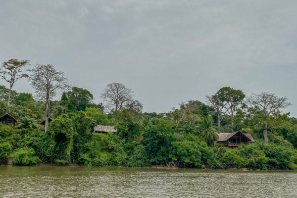 congo-conservation-company-sangha-lodge-from-river