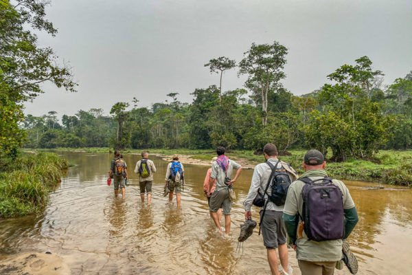 congo-conservation-company-sangha-lodge-river-walk